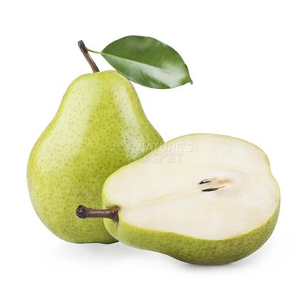 Pear Green  -  Imported