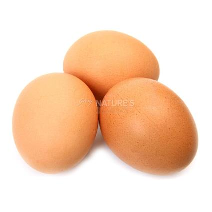 MPN BROWN SHELL EGGS PACK OF 6