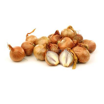 Onion Madras