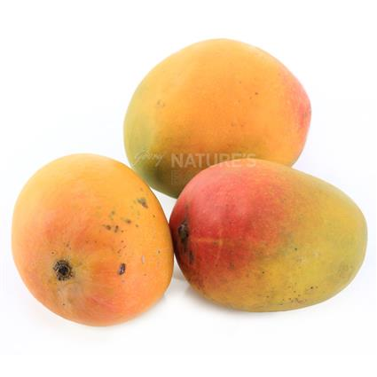 Kesar Mango - Fruit & Vegetable