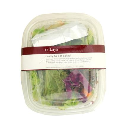 Ready To Eat Salad  -  Exotic