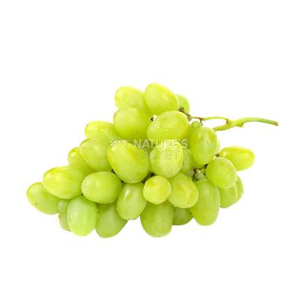 Grapes Green  -  Indian