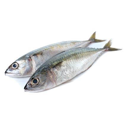 Fresh Mackerel Whole - Get Natures Best