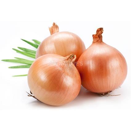 Onion  -  Organic