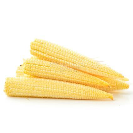 Baby Corn  -  Exotic
