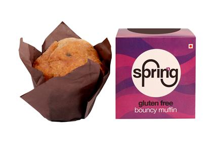 SPRINNG MUFFIN BLUEBERRY GF 90 GM