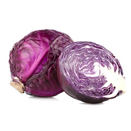 Cabbage Red  -  Organic