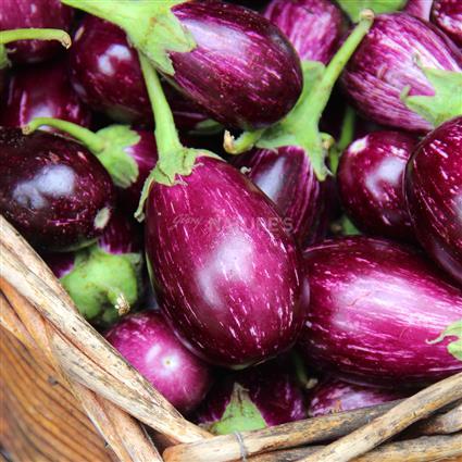 Brinjal Kateri  -  Organic