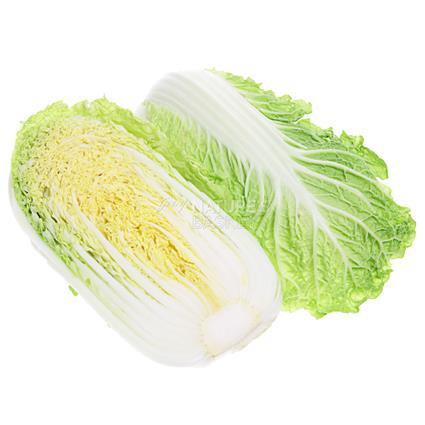 Chinese Cabbage  -  Organic