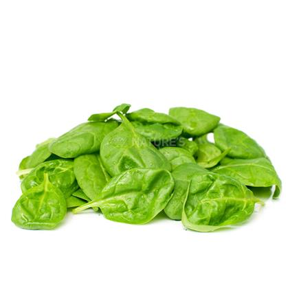 Baby Spinach/Palak - Imported