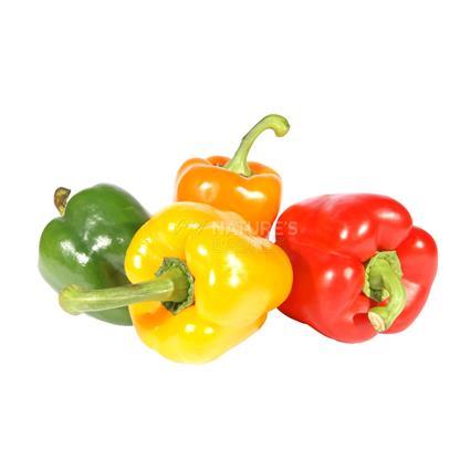 Capsicum Coloured  -  Organic