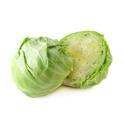 Cabbage - Surti/Tender Vegetable