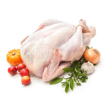 Raw Turkey - Alf Farm