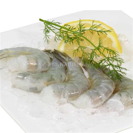 Premium Large Prawns - Fresh
