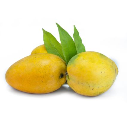 Mango Chausa - Natures Basket