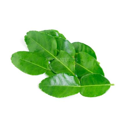 Kaffir Lime/Makroot Leaves  -  Exotic