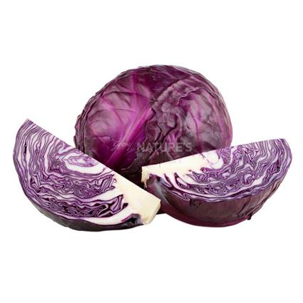 Cabbage Red  -  Organic