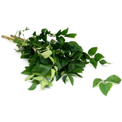 Curry Leaf  -  Surti/Tender Vegetable