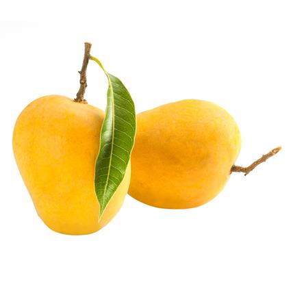 Dev Alphonso Mango Premium