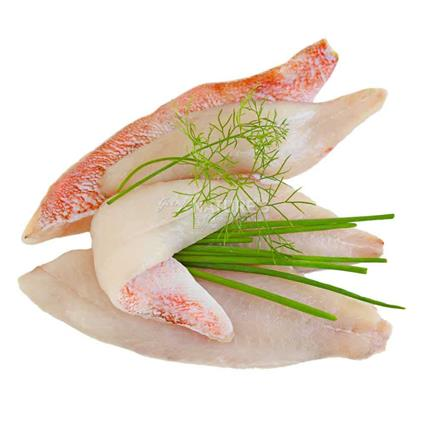 Red Snapper Skinless Fillet - Fresh