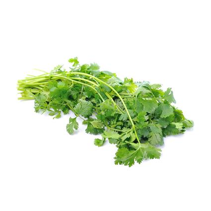 Coriander - Natures Best