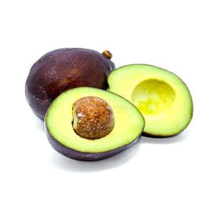 Avocado - Exotic