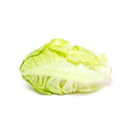 Baby Lettuce Mix  -  Organic
