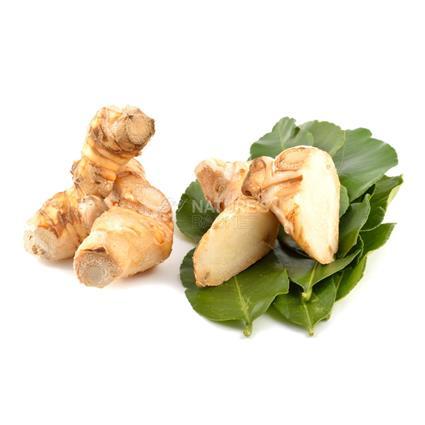 Thai Ginger/Galangal  -  Exotic