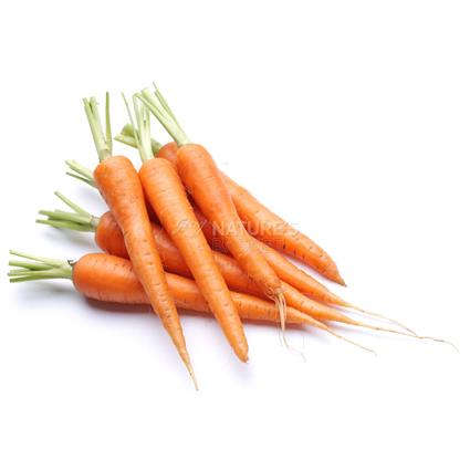 Carrot Indian  -  Organic