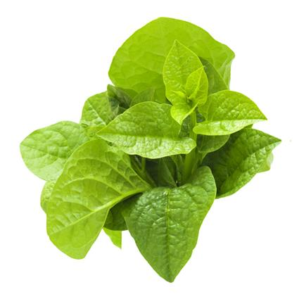 Spinach/Palak Malabar Organic