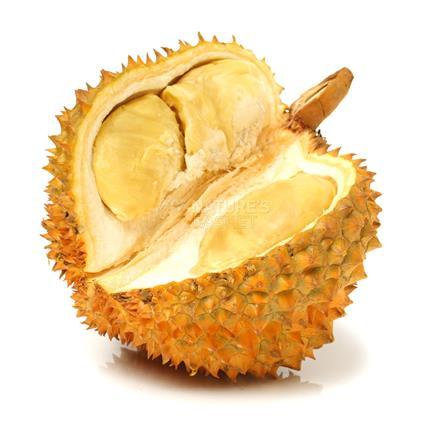 Durain Fruit - Exotic
