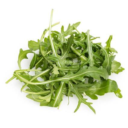 Lettuce Arugula Wild  -  Organic