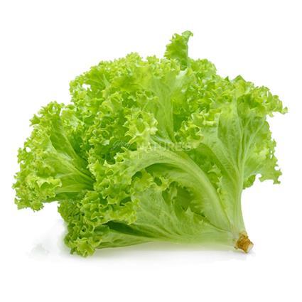 Lettuce Green - Natures Basket