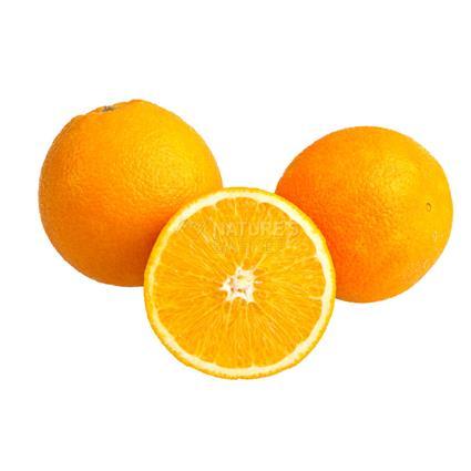 Mini Orange Seedless Imported