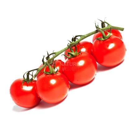 Tomato Cherry - Exotic