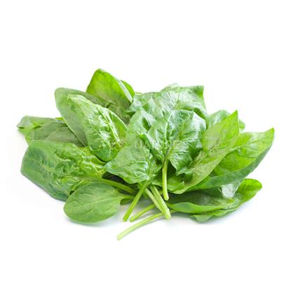 Baby Spinach/Palak  -  Exotic