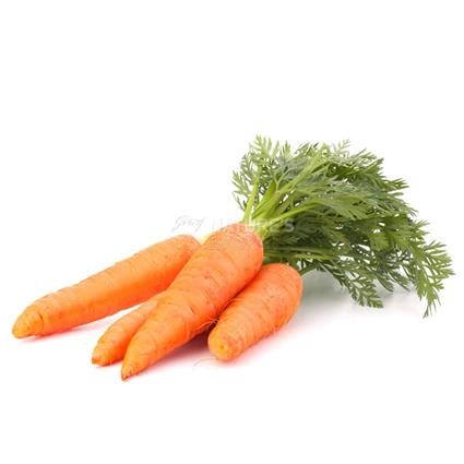 Baby Carrot  -  Exotic