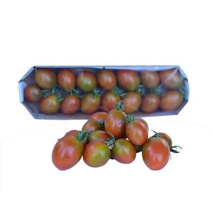TOMATO CHERRY PLUM BROWN