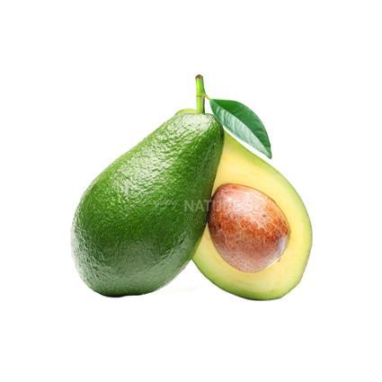 Avocado - Exotic
