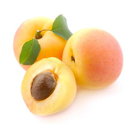 Apricot  -  Imported