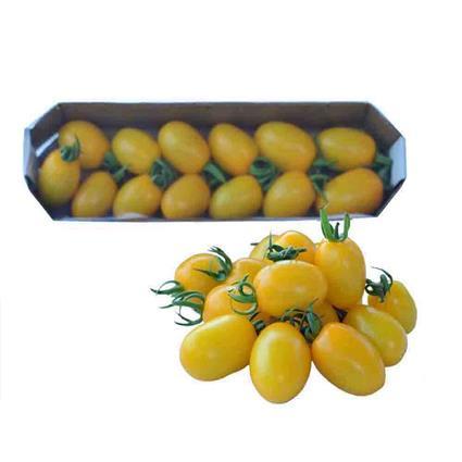 TOMATO CHERRY PLUM YELLOW