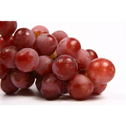 Grapes Red Globe  -  Imported