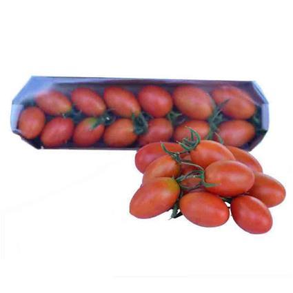 TOMATO CHERRY PLUM RED
