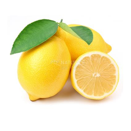 Italian Lemon  -  Exotic