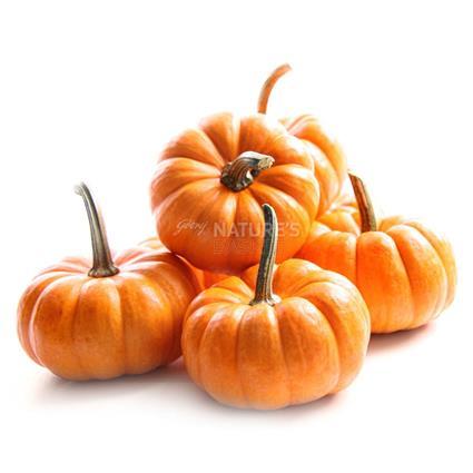 Pumpkin/Bhopla Disco