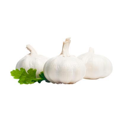 Garlic  -  Organic