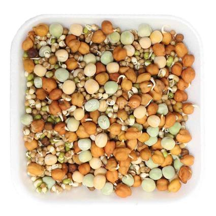 Sprouts Mixed - Natures Best